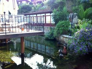 Baga Otelin Önündeki Pınar