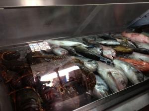 Taverna Katina'nın Taze Balık ve Deniz Ürünleri