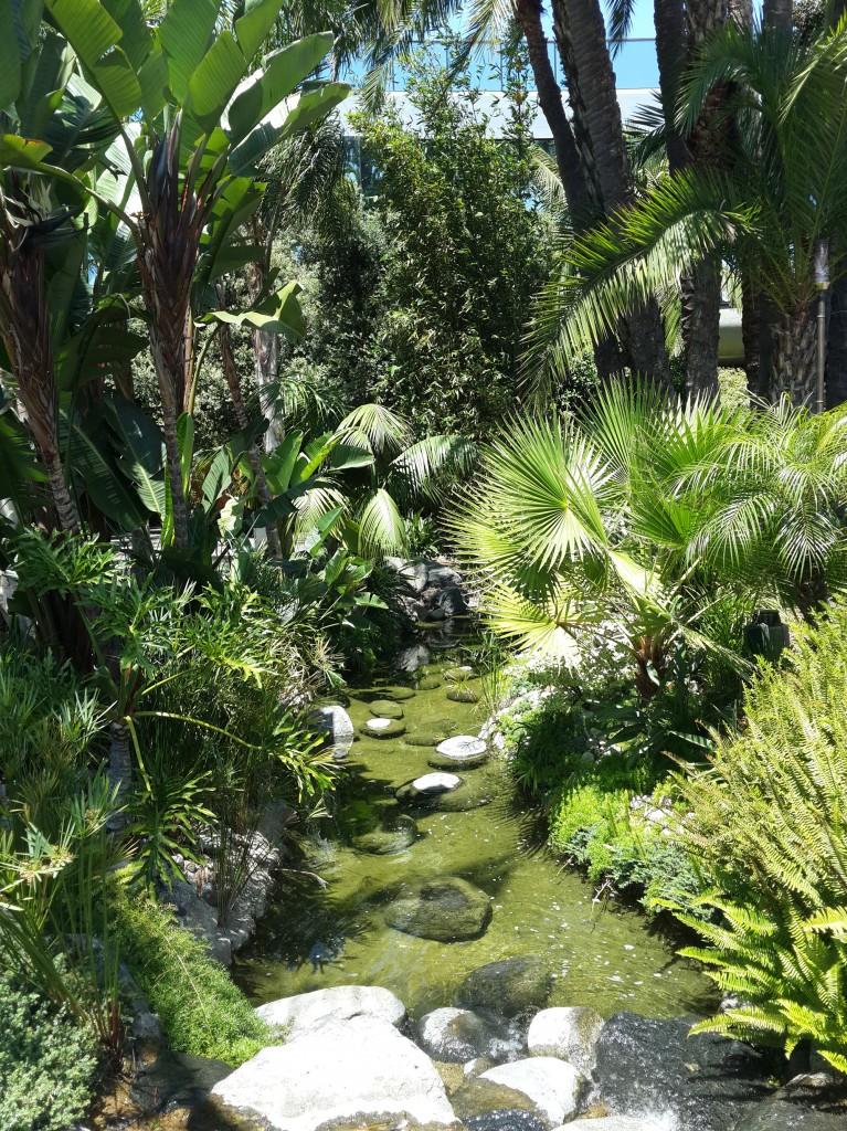 Pyezaj Ciddi Anlamda Tropikal Bir Yerdeymiş Gibi Hissettiriyor