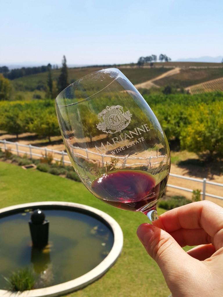 Marienne bağlarının şarapları çok başarılı...