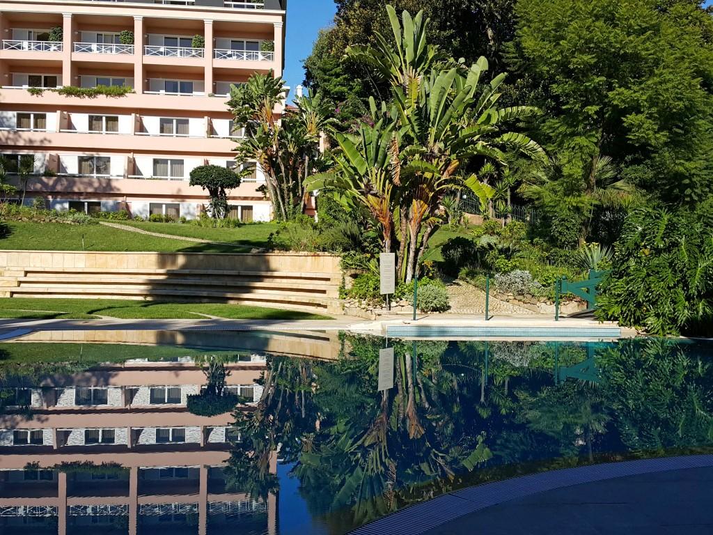 Havuz ve bahçe tropikla bir yeri andırıyor...